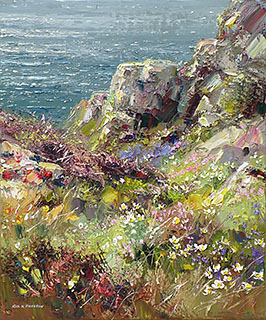 Spring Flowers, Treen Cliffs